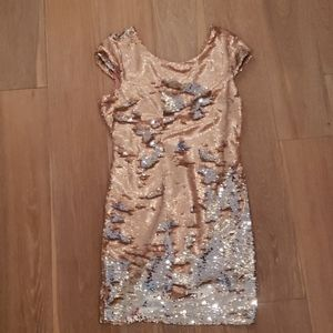 Light pink/silver sequined dress by Ark & Co